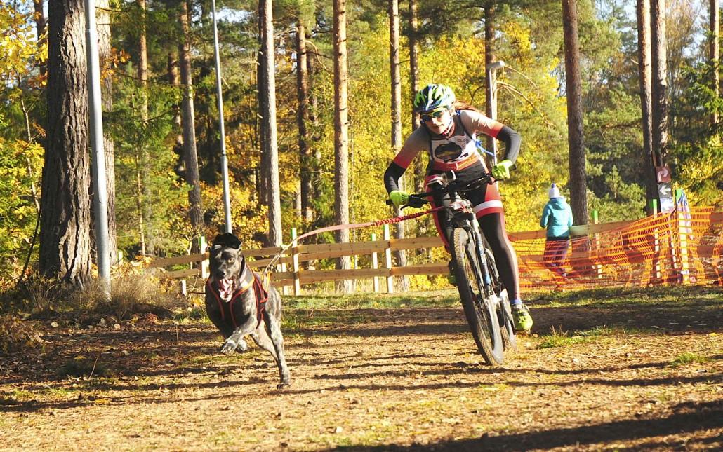 Agnieszka Jarecka ze srebrnym medalem mistrzostw Europy w bikejoringu 2018 02